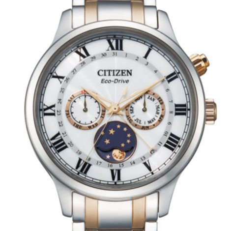 Citizen Eco-Drive AP1054-80A Moon Phase Male Watch